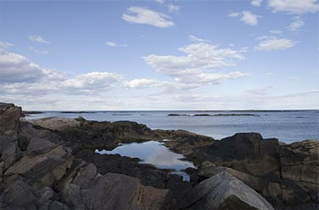 Maine Seaside Rentals Seasonal Rentals In Maine Vacation Rentals In Biddeford Pool Fortunes Rocks Hills Beach And Granite Point Maine