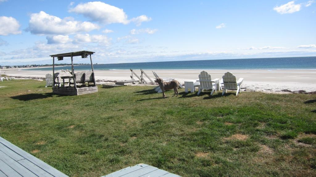 Call Of The Sea Details Vacation Rentals In Biddeford